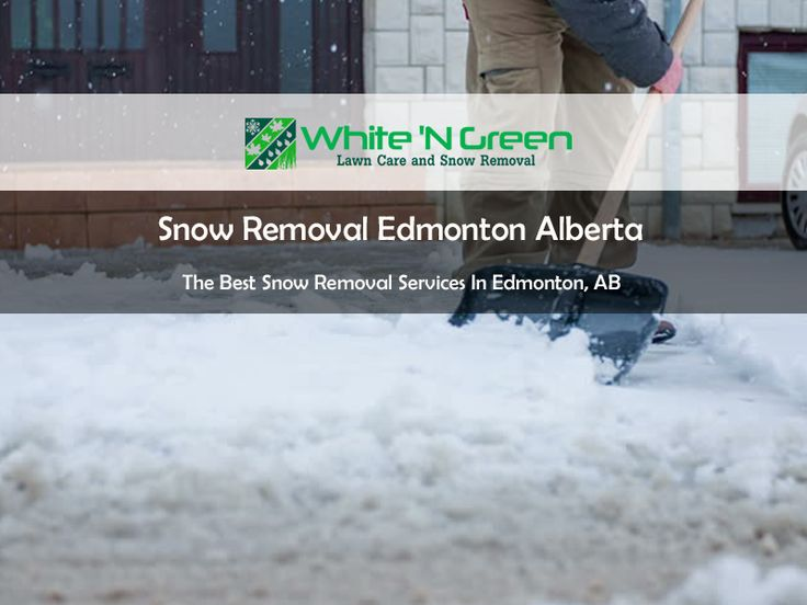 White' N Green, specialize in all-season property maintenance be it a single family residential, multi-family units or commercial properties. We have gained a respectable reputation in Lawn Maintenance, Spring clean-up and Snow Removal services.