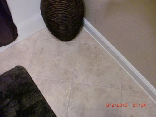 From The Home Depot · TrafficMaster Ceramica 12 In. X 12 In. Exodus  Resilient Vinyl Tiles (30 Sq