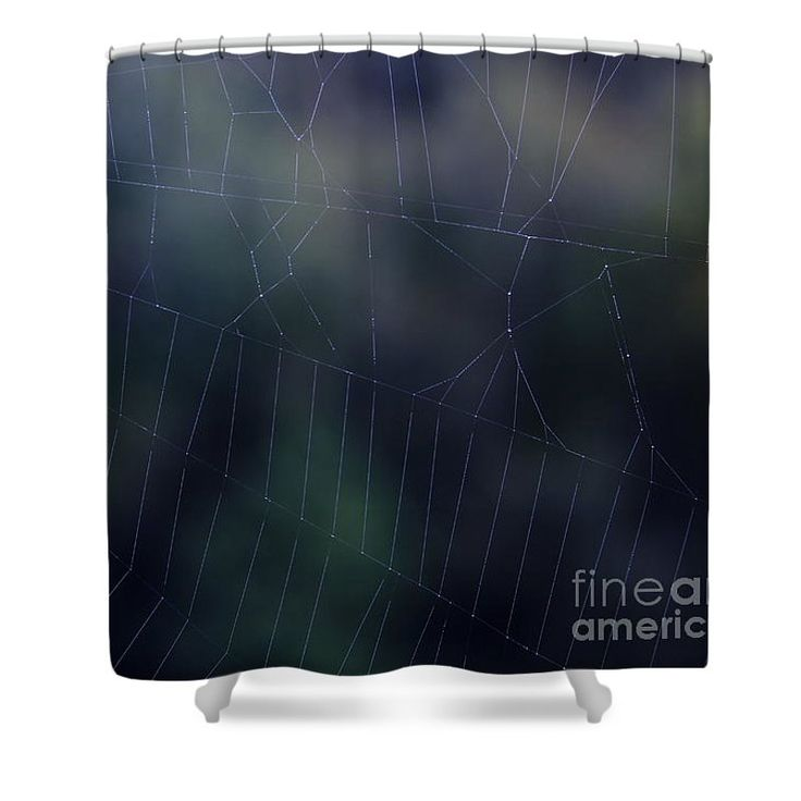 Evening Web Shower Curtain by Sverre Andreas Fekjan.  This shower curtain is…