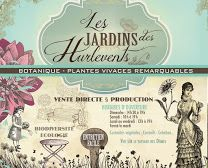 """Plantes vivaces-Pépinière """"Les jardins des Hurlevents"""""""