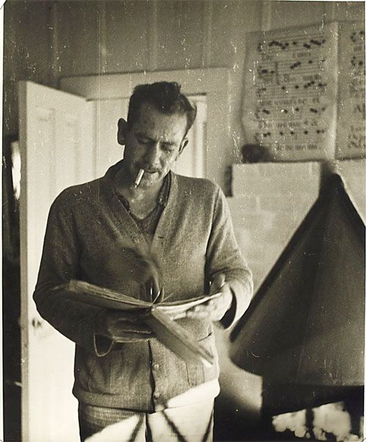 What are the common themes used in John Steinbeck's novels?