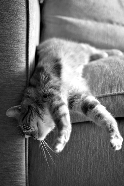 Just wanna sleep