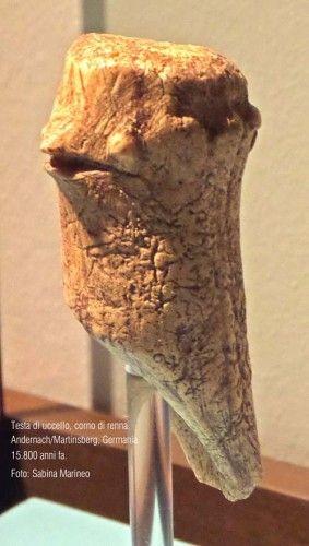 testa di uccello, corno di renna. Andernach, 15.800 anni fa