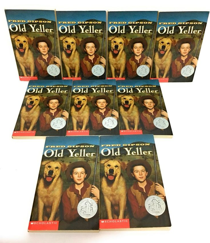 Lot 9 old yeller guided reading book lot teacher classroom