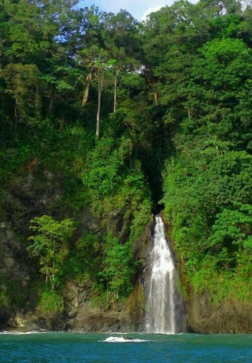 Corcovado National Park, Puntarenas, Costa Rica #costarica #Puntarenas / Pinned by #vacation planning experts www.4tulemar.com