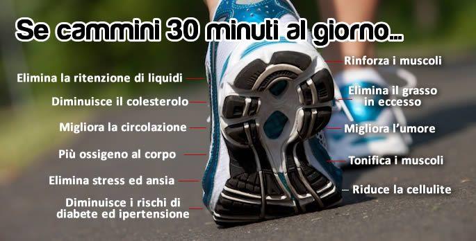 Comodo, semplice e sopratutto economico. Camminare è una delle attività fisiche più raccomandati per rimettere [Leggi Tutto...]