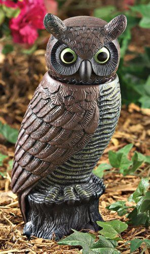 Detector Owl by BRAND NOT SPECIFIED  $19 99  Motion