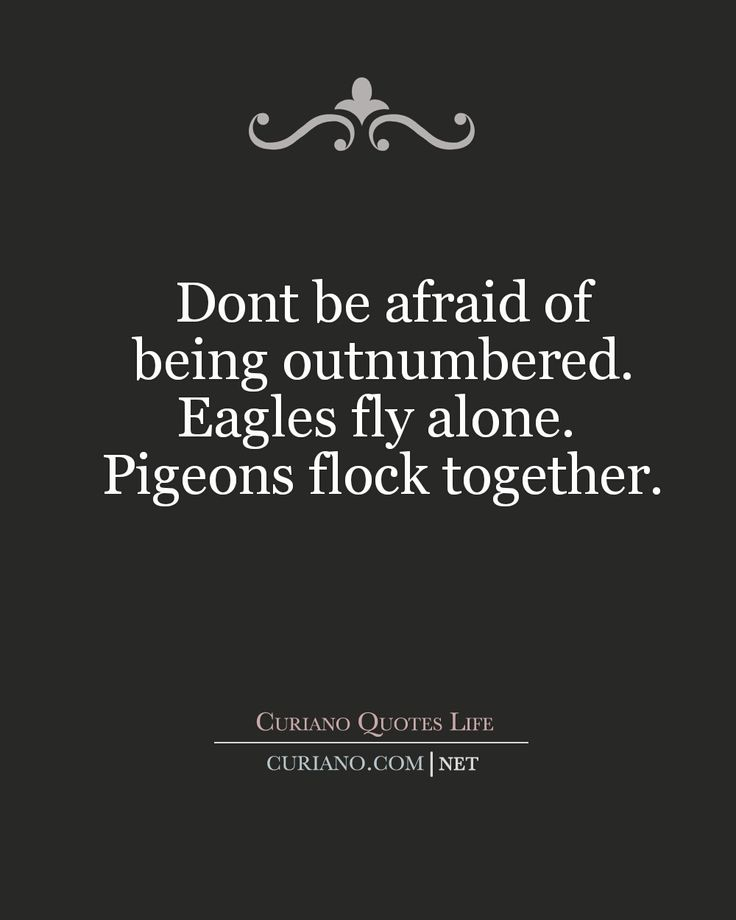 I think quotes are one of the best ways to share the wisdom of the ages and modern day sages Im a fan of using quotes both to share insight as well as