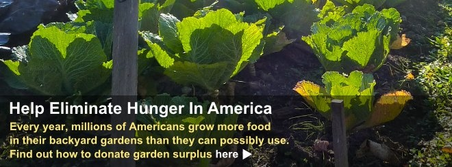 AmpleHarvest.org connects 40+ million Americans with excess food in their garden and local food pantries.