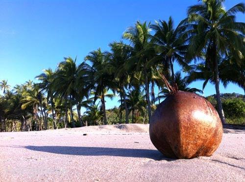 Beautiful Beach at mal pais Costa rica
