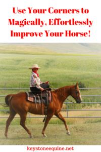 Using our corners to teach the horse, use himself, inside bend, training tips, horsemanship, shoulders up, bend...