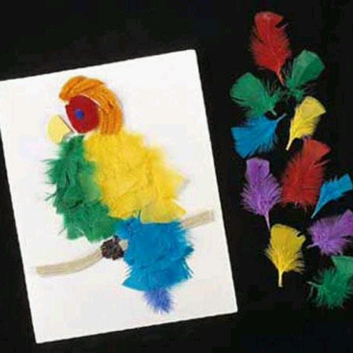 Cool feather craft plumes pluimen feathers pinterest for Feathered birds for crafts