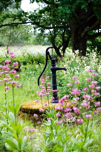 beautiful wildflower garden surrounding old water pump: Flowers Gardens, Gardens Accessories, The Farms, Old Water Pumps, Country Living, Fields Of Dreams, Country Life, First Houses, White Farmhouse