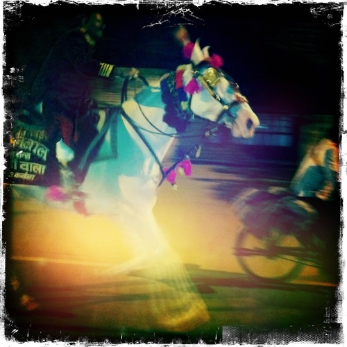 Night Ride - Photographed by Collette Dinnigan