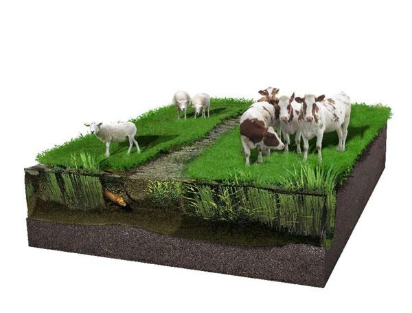 Landgebruik 9 by Mieke Roth
