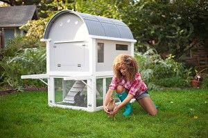 "How to build a chicken coop ~ if only we were allowed to have them here in the ""burbs""!: Backyard Chickens, Garden Ideas, Chicken Coop Plans, Chicken Coops, Chickencoop, Diy Project, Chicken House, Mobile Chicken, How To Build"