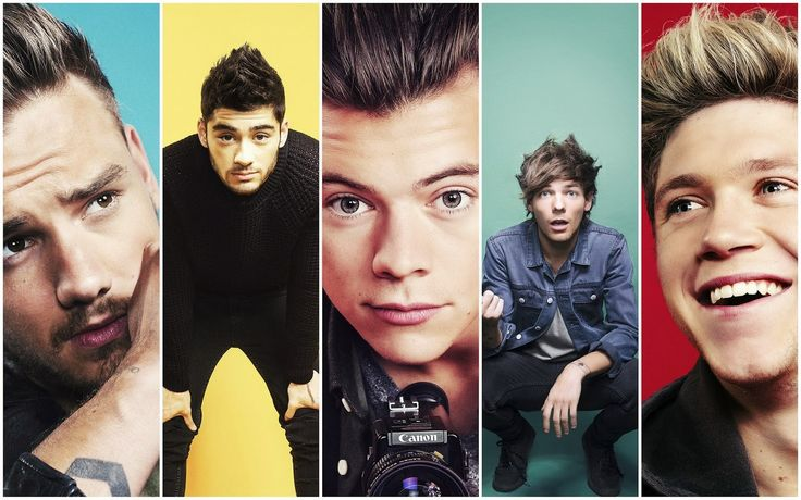 """One Direction 2014 