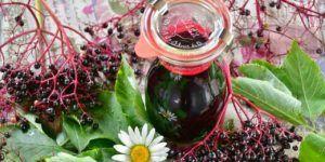 Syrop z czarnego bzu - prosty przepis na grypę i przeziębienie!