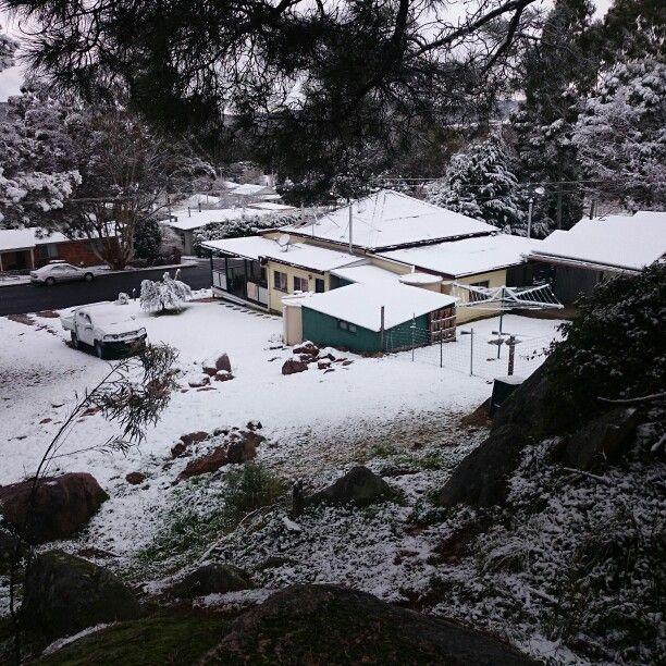 Backyard snow july 2015