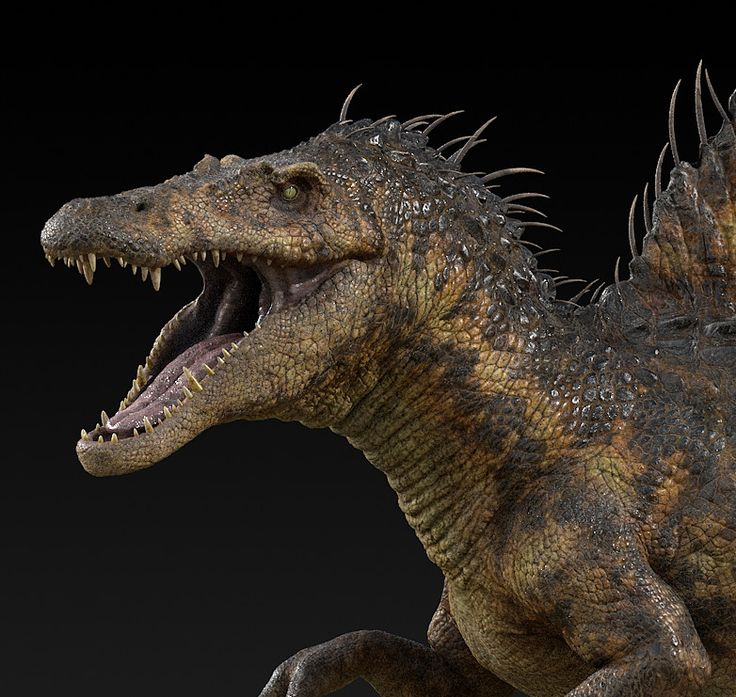 1366 best t rex and rival theropods images on Pinterest | Dinosaurs ...