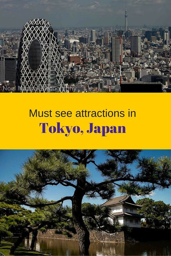 The must see attractions in Tokyo, Japan. Tokyo is a very large city and these are the most popular and well known attractions and a few that are not on the radar of what you should do and see while visiting Tokyo. http://travelphotodiscovery.com/best-places-to-photograph-tokyo-japan/