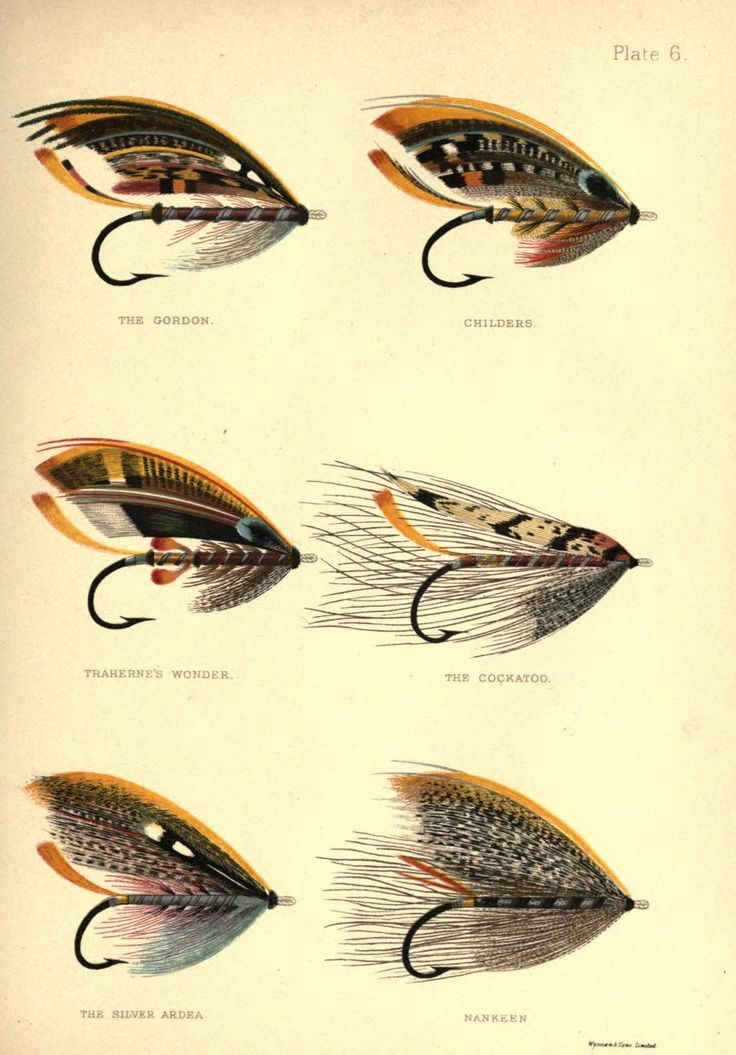Plate 6: The Gordon, Childers, Traherne's Wonder, The Cockatoo, The Silver Ardea & Nankeen, George Kelson - The Salmon Fly 1985