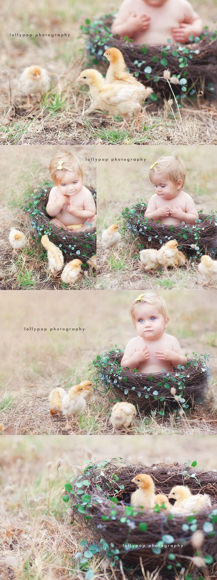 Easter chickens photo shoot. ♡ Photo Session Ideas | Props | Prop | Child Photography  Pose Idea | Poses | Family | Farm | Spring Mini Session | Animals | Pet | Baby