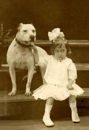 "Interesting! Pitbulls use to be called ""Nanny Dogs"" they were the number one dog trusted with children and adults! Check out these photos"