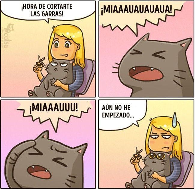Cómic gato en casa corte de uñas y drama