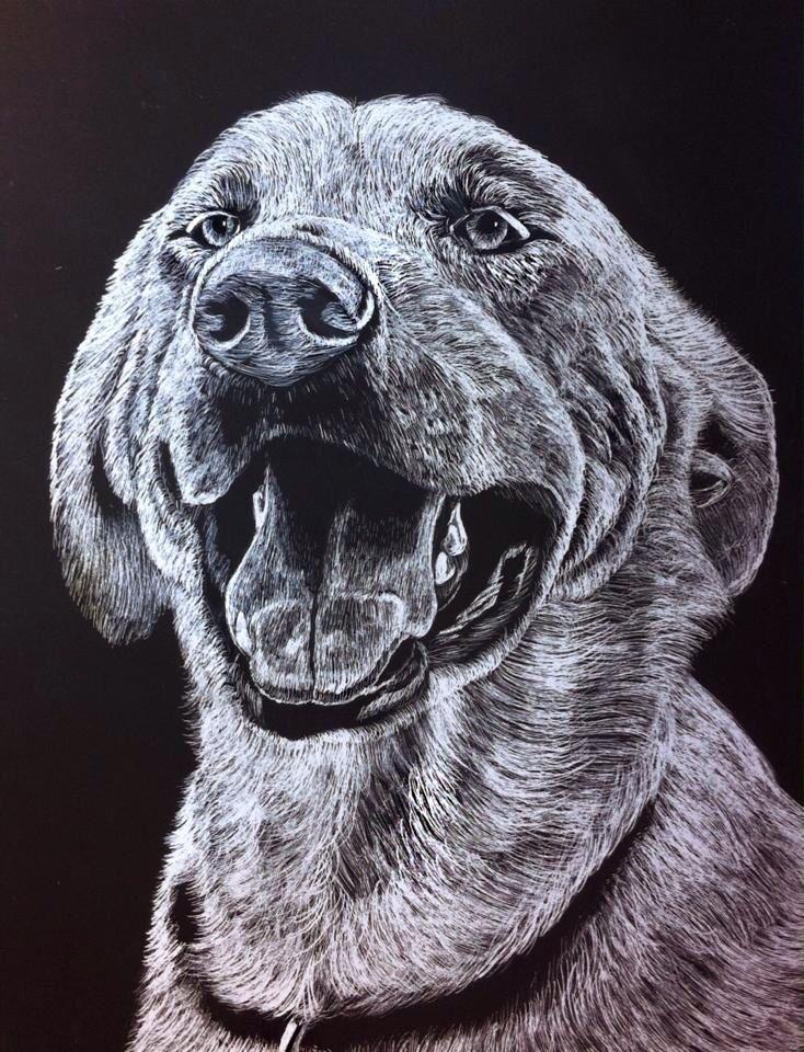 #animals #dog #scratchboard #illustration #art #blackandwhite