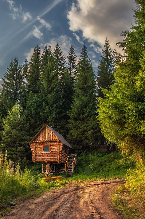 18 best images about cabins cottages on pinterest log for Small survival cabin