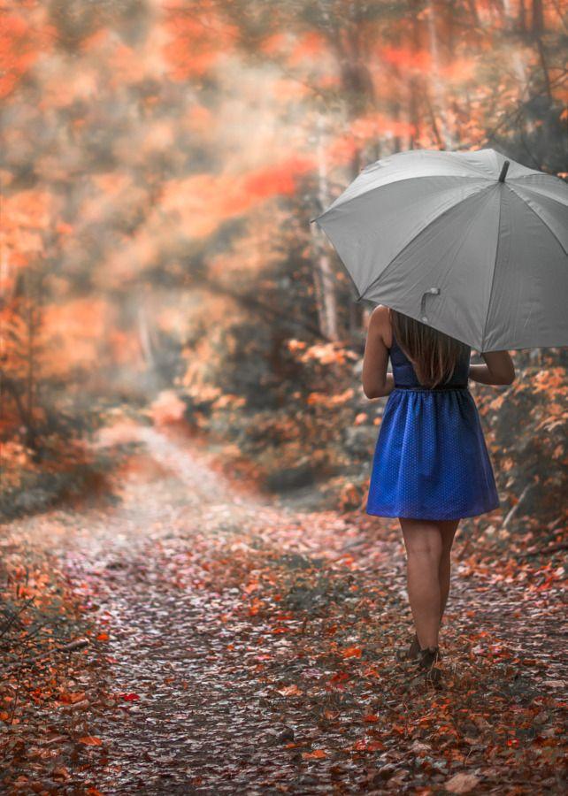 Pin By Robin On Fall Umbrella Photography Cool Umbrellas Rain