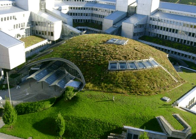 Greenroofs.com: Green Roof Energy Series, By Chris Wark. Photo Courtesy Christine Thüring of Green Roof Safari