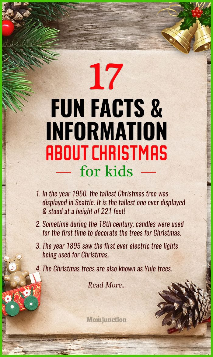 To make your tots gaping in wonder this Christmas, here are some fun Christmas facts for kids they will simply love. They are interesting & informative