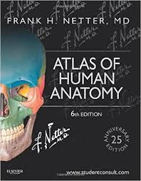 Download Netter Atlas pdf Free 6th Edition