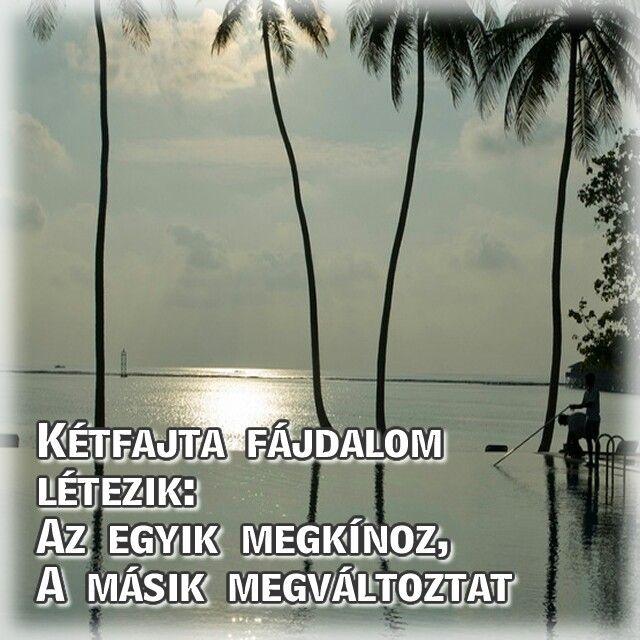 #idézetek #jódumák #http://www.onlinestratega.info #poénok #eldobodazagyad