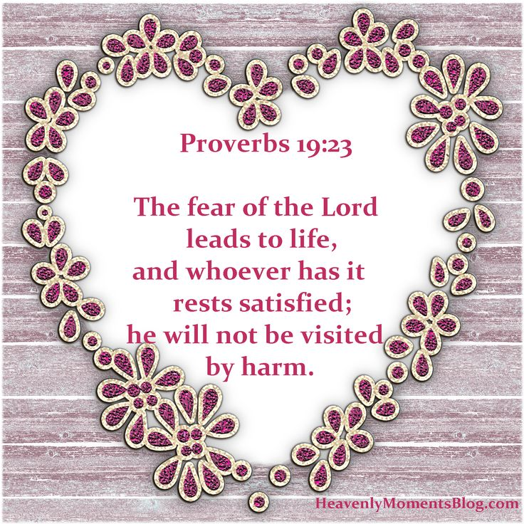 Proverbs 19:23 The fear of the Lord leads to life, and whoever has it rests satisfied; he will not be visited by harm.  #Jesus #JesusChrist #Christ #Christian #Christianity #Lord #God #Proverbs #Bible #quote #verse #scripture #fear #hope #love #faith #spiritual #religion