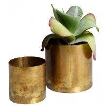 H Skjalm P. Flower Pot Raw Brass --- Raw Brass Flower Pots by H. Skjalm P. of DenmarkColour: BrassSize: Small 10 x 10 cm, Medium 14 x 14 cm