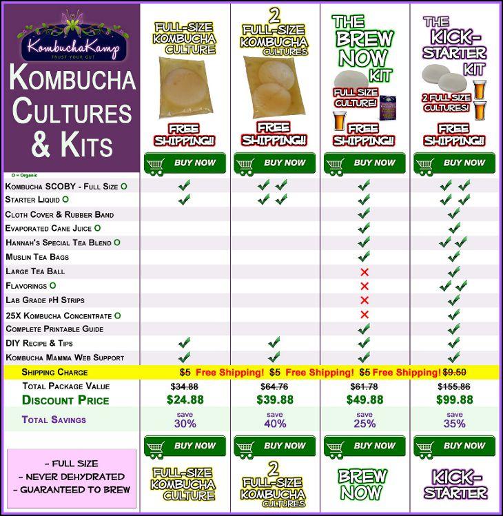 Buy Kombucha Cultures: Mushroom Scoby & Kombucha Starter Kit
