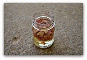 olej z ružových lupeňov - DIY Recept: Ako vytvoriť ružový olej na tvár, pokožku a vlasy + Použitie & výhody | wildturmeric