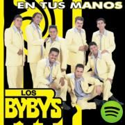 Dame La Oportunidad, a song by Los Byby's on Spotify