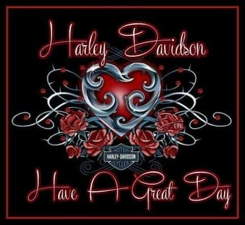 Harley Davidson Wallpaper, Harley Davidson Art, Harley Bikes, Biker Quotes,  Biker Style, Motorcycle Art, Biker Girl, Girl Stuff, Post Board