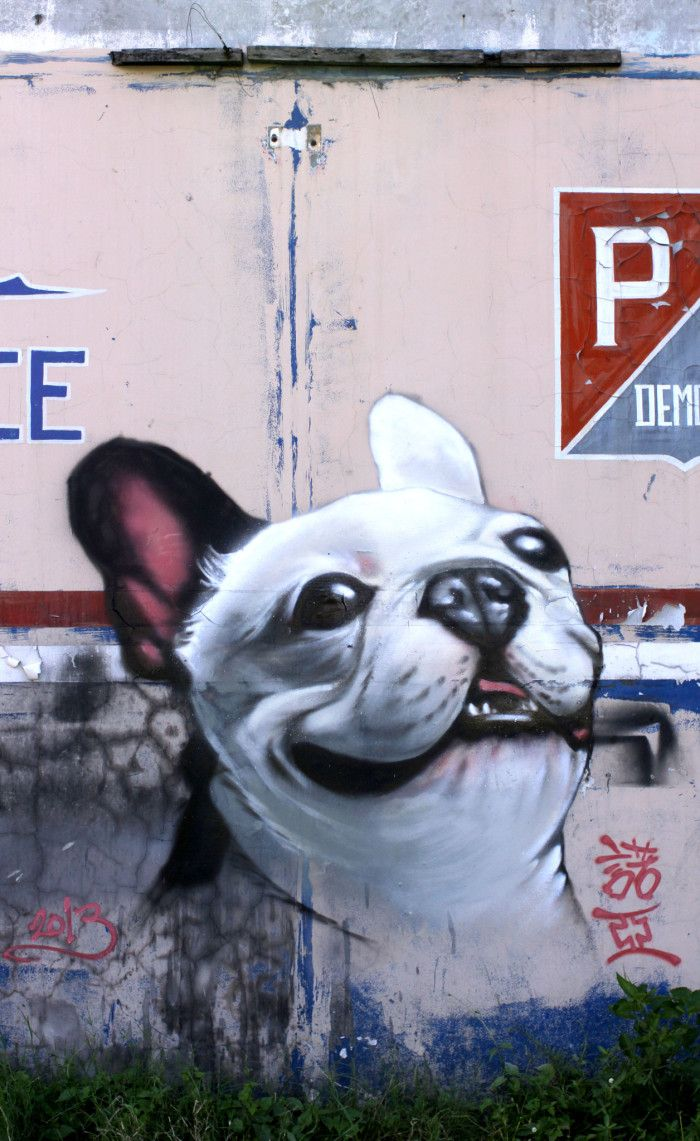 Graffiti wall rubric - 20 Cool Pieces Of Street Art Featuring Dogs