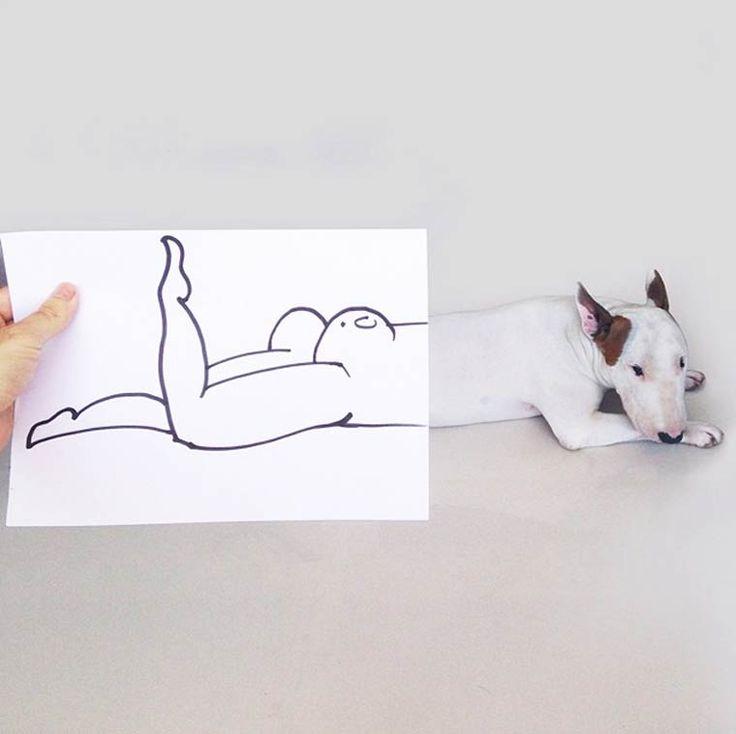Il s'amuse à mettre en scène son chien pour créer des photos hilarantes !