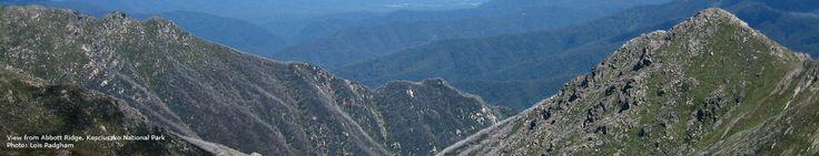 View from Abbott Ridge, Kosciuszko National Park | Lois Padgham - Australian Alps Education Kit