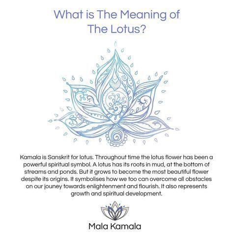 You see it all the time in yoga - but what does it mean? #funfact for #monday! Shop mala beads and yoga jewelry at malakamala.com link in bio #malakamala #TheMkTribe #quotestoliveby #quoteoftheday #picoftheday #malas #malabeads #bohostyle #bohemian #boho #journey #adventure #wanderlust #spiritual #yoga #yogaeverydamnday #yogalifestyle #meditation #meditate #meditation #symbol #lotus #chakra #chakras #mantra #instagood