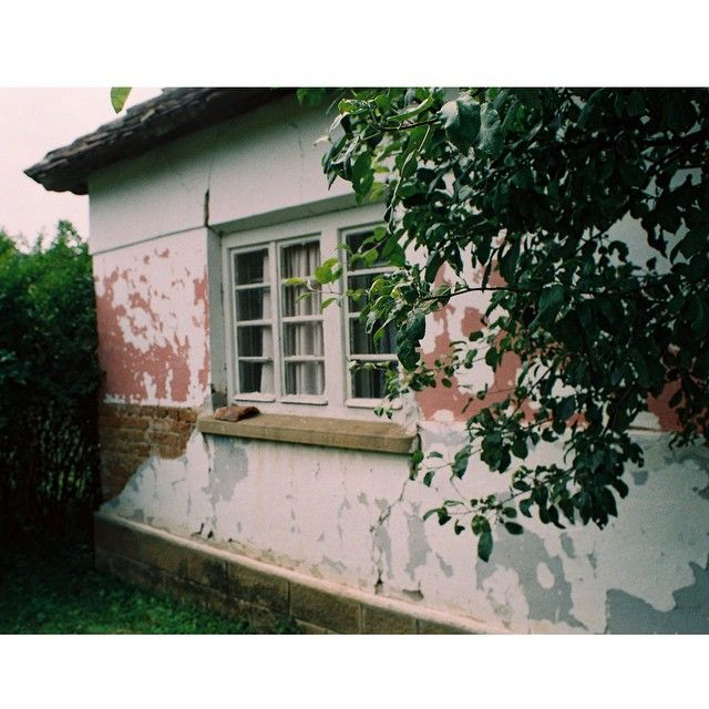 #35mmfilm #analogfeatures #filmphotography #film #filmisnotdead #analog #nikkormat #analogphotography #serbia #vscocam
