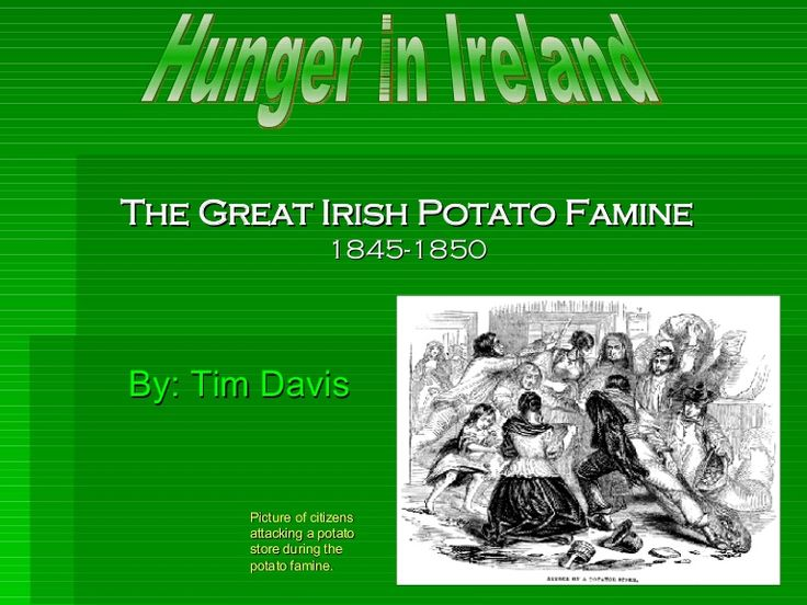 The Great Irish Potato Famine 1845-1850 By: Tim Davis Hunger in Ireland Picture of citizens attacking a potato store during the potato famine.