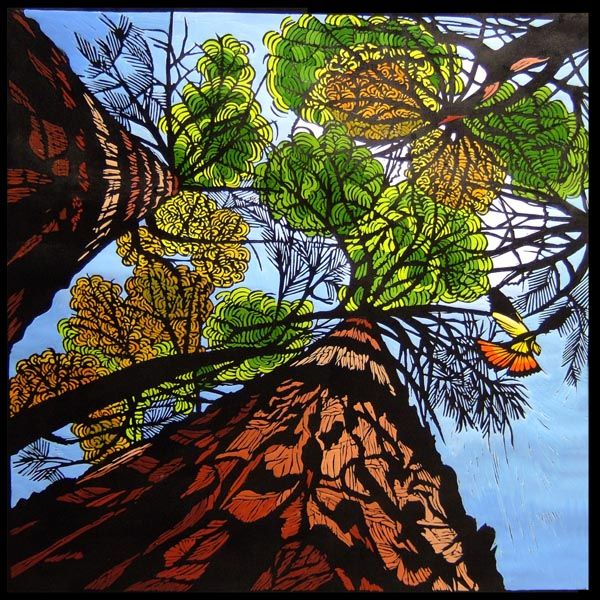 Towards The Forest Canopy 80cm w x 80cm h Gail Kellet Gallery