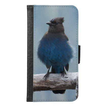 Western Blue Jay Photo Samsung Galaxy S6 Wallet Case - animal gift ideas animals and pets diy customize